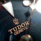 Tudor avatar
